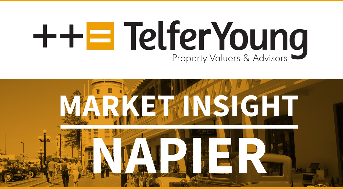 Napier Market Insights